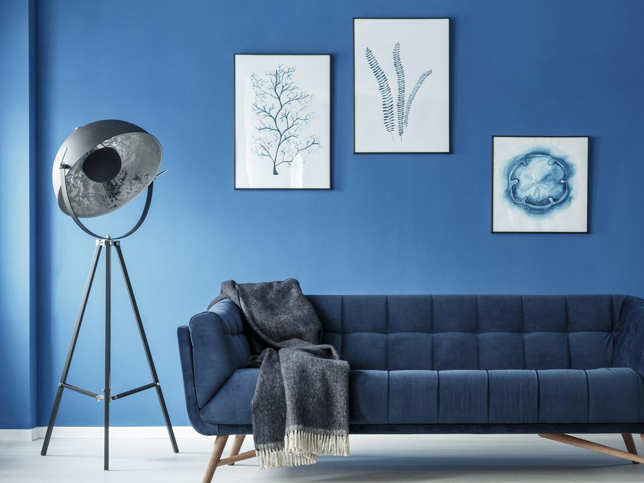 Farbe Für Die Wohnung Blaue Wand