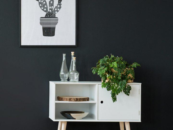 Zimmerpflanzen an einem hellen Standort auf Beistelltisch