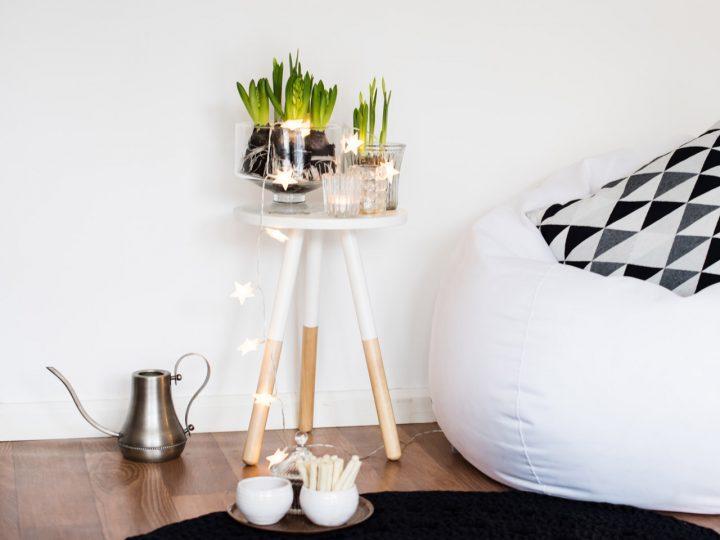 Zimmerpflanzen mit Beleuchtung als saisonale Idee