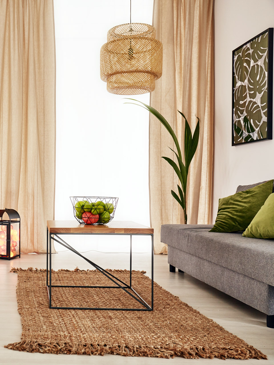 Zimmerpflanzen pflege und m glichkeiten for Zimmer deko natur