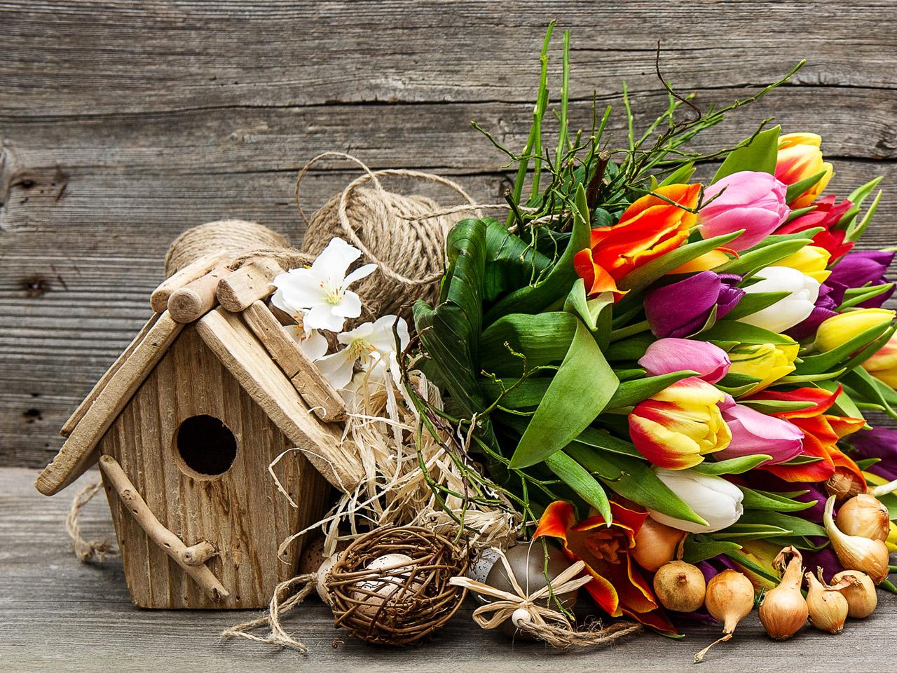 Farbenfrohe Osterdekoration - Bunte Tulpen