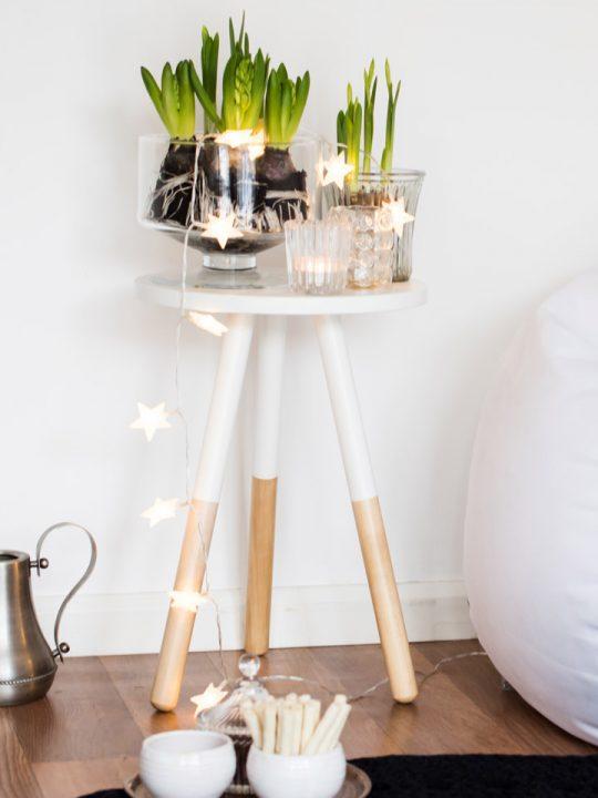 Weihnachtsbeleuchtung im Blumentopf: Sternen-Lichterkette